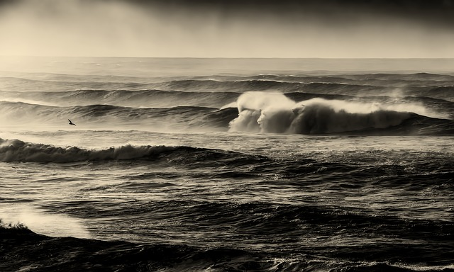 海,荒波,助け