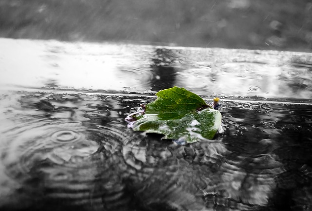 神の化身と話したいので雨を待つもの