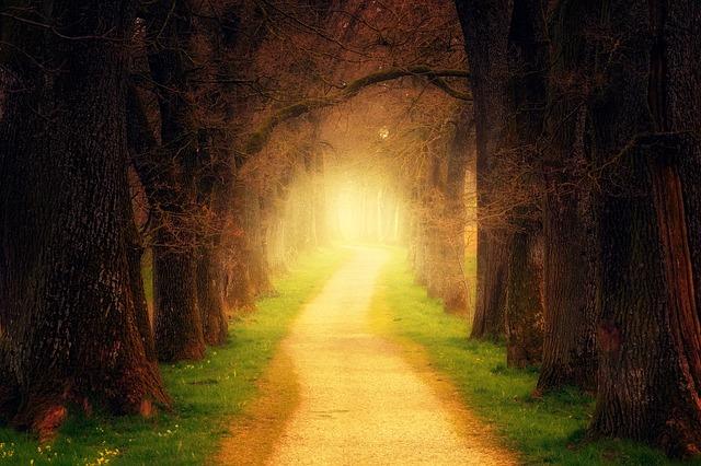 神に向かう道を作る