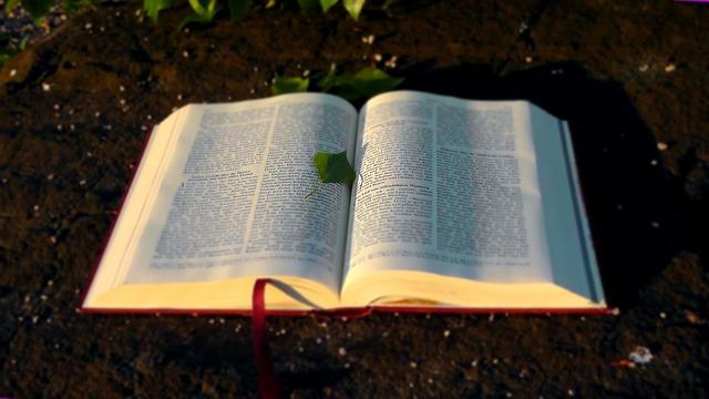 神の書を書き換える