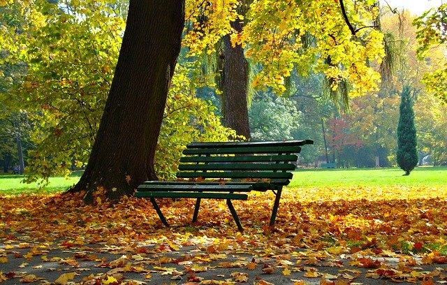 ベンチに座り夢を考える