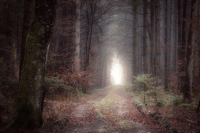 神への道と神の七つの掟