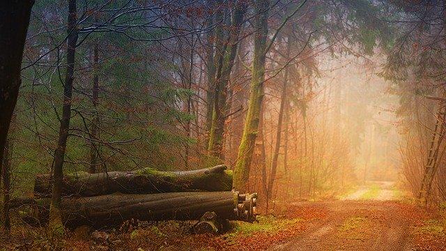 天国への道を探す