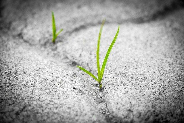 神への成長