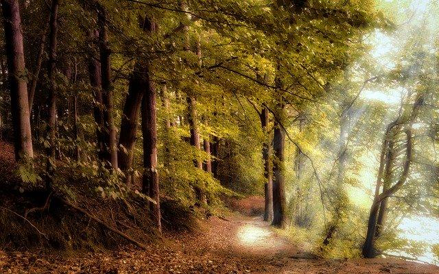 神への道と志