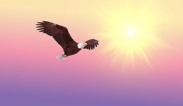 神と自由と間違い