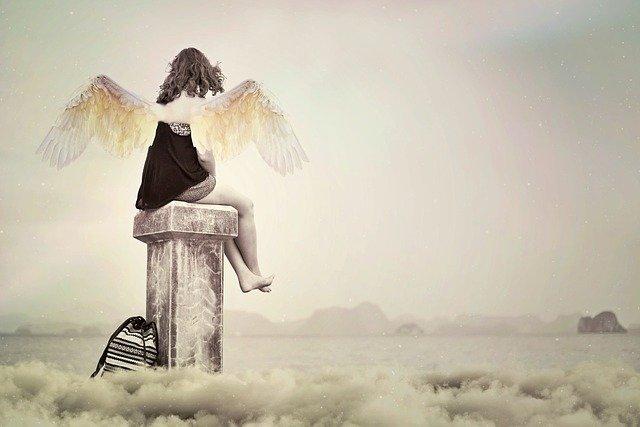 天使と努力